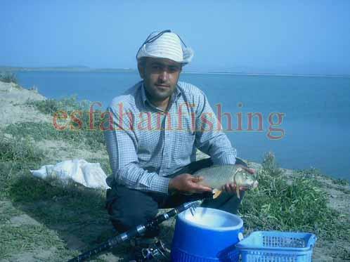 آموزش ماهیگیری با قلاب در سد زاينده رود عکسهای ماهیگیری مظاهر گنجی در زاینده رود اصفهان