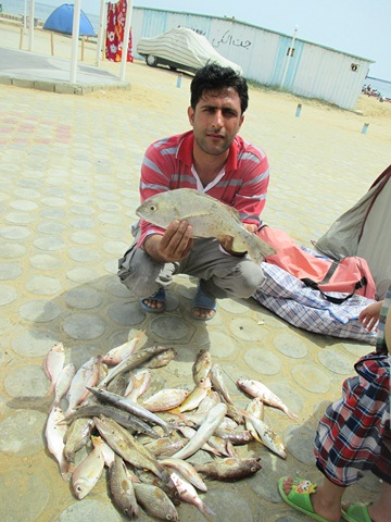 [تصویر:  suza_fishing9.JPG]